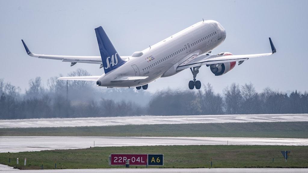 SAS flygplan lyfter