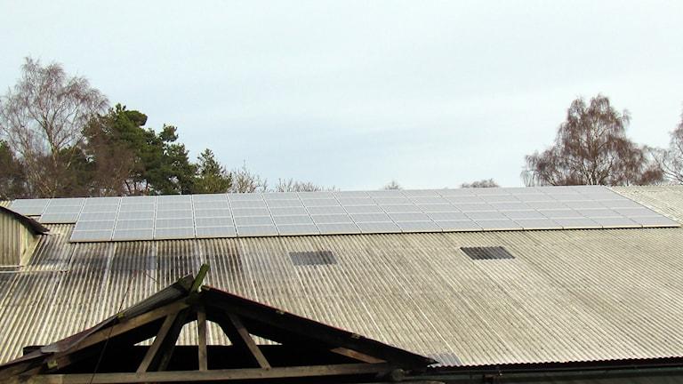 Solceller på kostall vid Bomunds i Hammaren i När