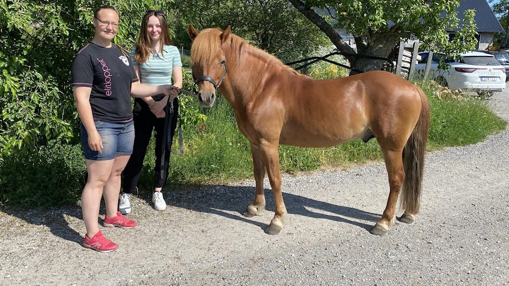 Häst och två kvinnor.