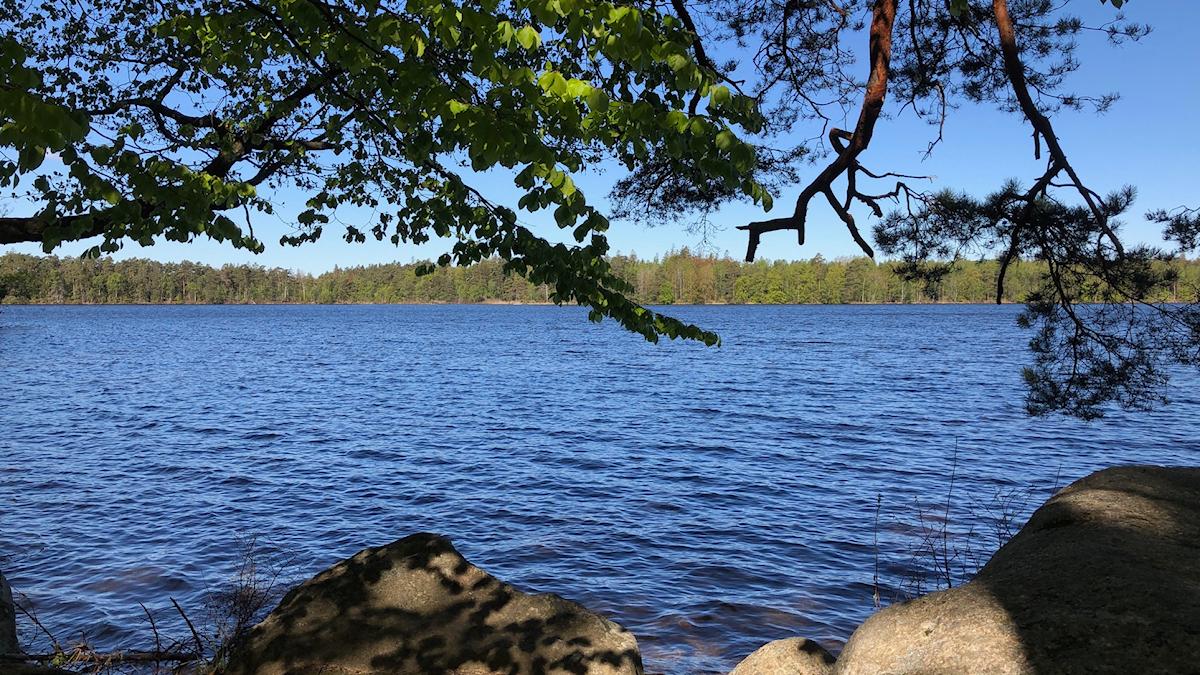 vatten, sten