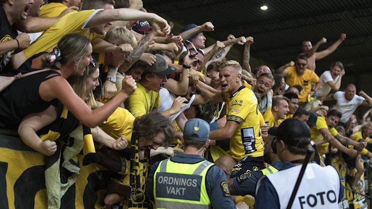 Det vilda jublet efter Elfsborgs sena segermål i matchen mot Kalmar.