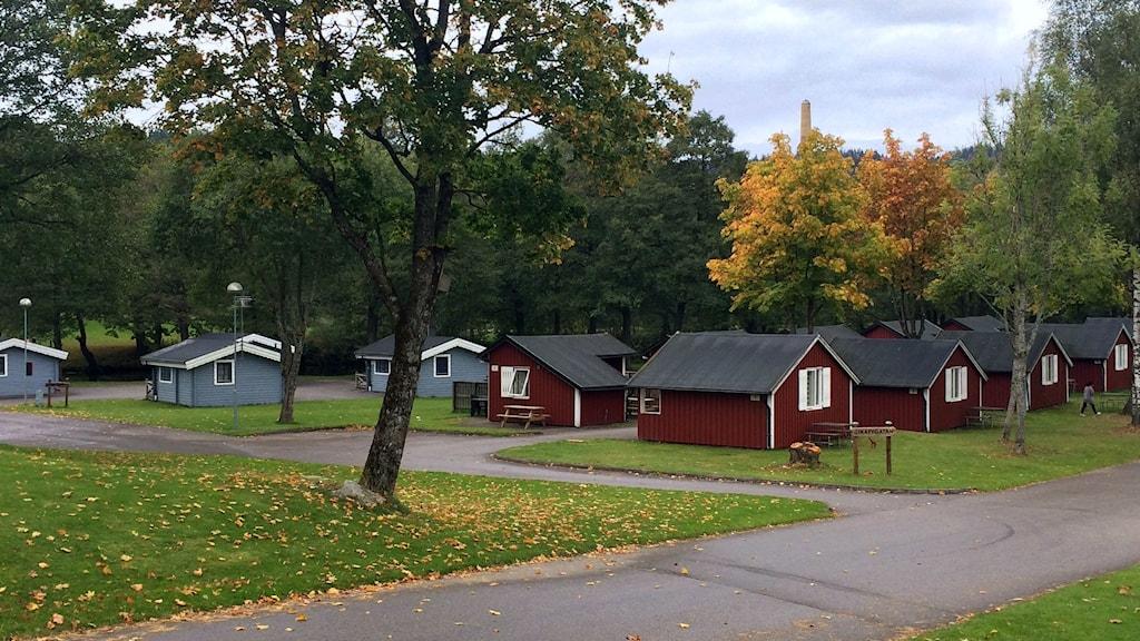 Stefan Eriksson, rektor på CFL utanför den nyöppnade skolan på Saltemads camping. Foto: Melissa Gustafsson/SR