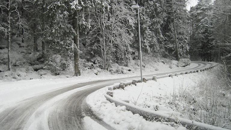 Just nu är många vägar moddiga och i natt väntas mer snö. Foto: SR Sjuhärad.