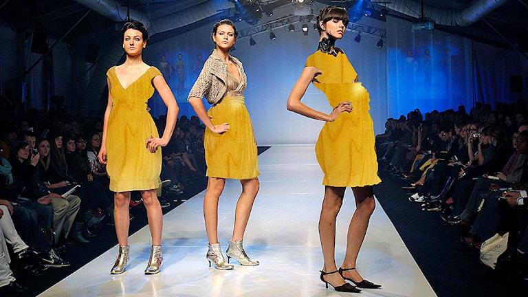 SP vill göra kläder av trä - P4 Sjuhärad  798a74ad99d54