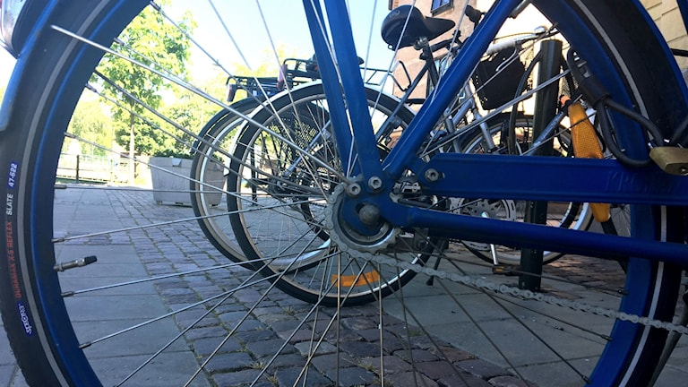 En närbild av ett cykelhjul, cykelns ram är blå och genom ekrarna syns två andra cyklar. Bortom dem skymtar en ljusblå himmel och gröna träd.