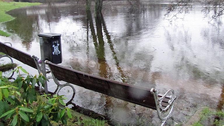 Vatten från Ätran i vintras: ett exempel på en oavsiktlig översvämning. I Viskan ska detta istället göras med flit. Foto: Nicklas Malmberg.