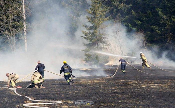 Brandmän från flera räddningstjänster kallades in för att släcka gräsbranden i Sjötofta. Foto: Henrik Snygg