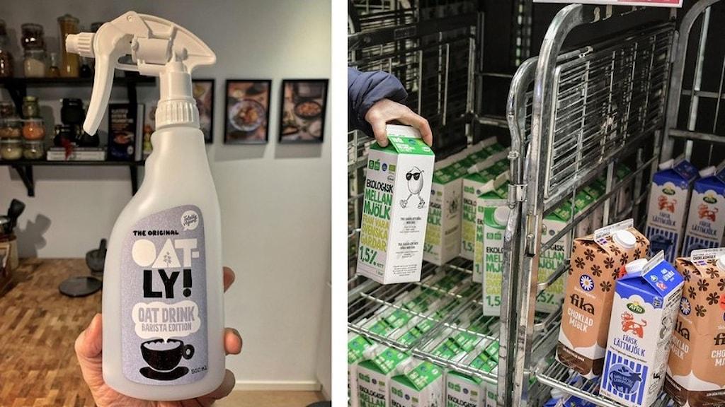 Till vänster, en sprayflaska med oatly-mjölk. Till höger, flera vanliga mjölkpaket som står i affären.
