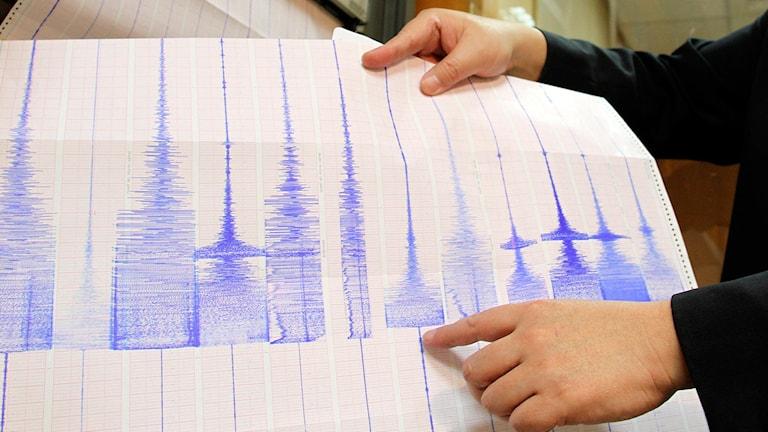 Seismologisk utskrift av skakningarna under ett skalv, dock inte det i Falköping. Foto: AP/TT.