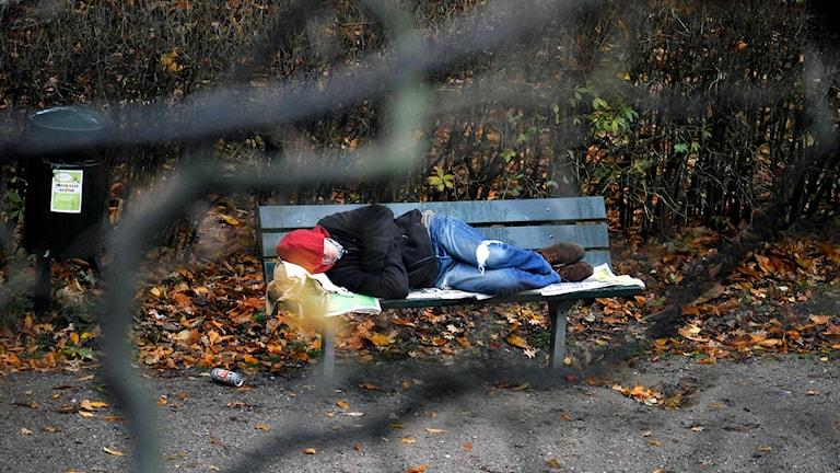 En hemlös som sover på en parkbänk. Foto: Bertil Ericson / TT.