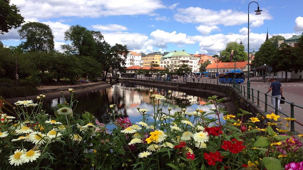 Midsommarfint i centrala Borås. Foto: Ann-Christine Lundberg.
