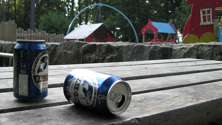 Flera hundra ungdomar festade i Annelundsparken igår, resterna står kvar idag. Foto: Jenny Hellström
