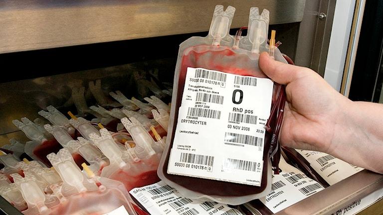 Blodpåsar från blodgivning. Foto: Södra Älvsborgs sjukhus.