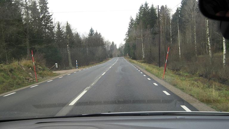 Gällstadvägen, väg 1570 - här dödas sju till åtta älgar årligen i trafikolyckor. Foto: Pär Sandin.