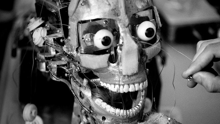 Robot. Foto:TT.