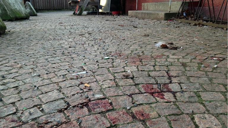 Ännu finns det kvar spår från helgens knivskärning på Sjöbo. Foto: Erika Larsson