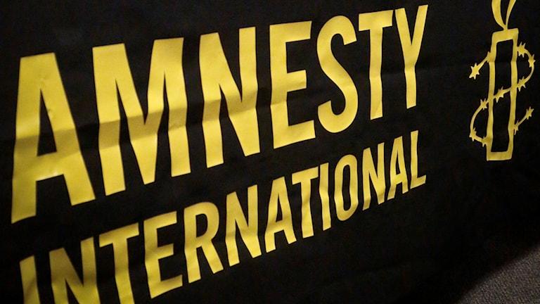 Amnesty International. Foto: AP Photo/Bebeto Matthews