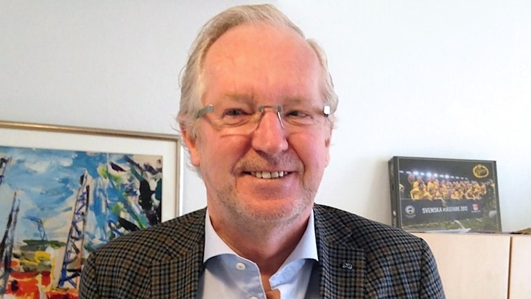 Morgan Hjalmarsson (FP).