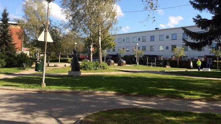Hässleholmen i Borås. Foto: Marcus Alfredsson/SR