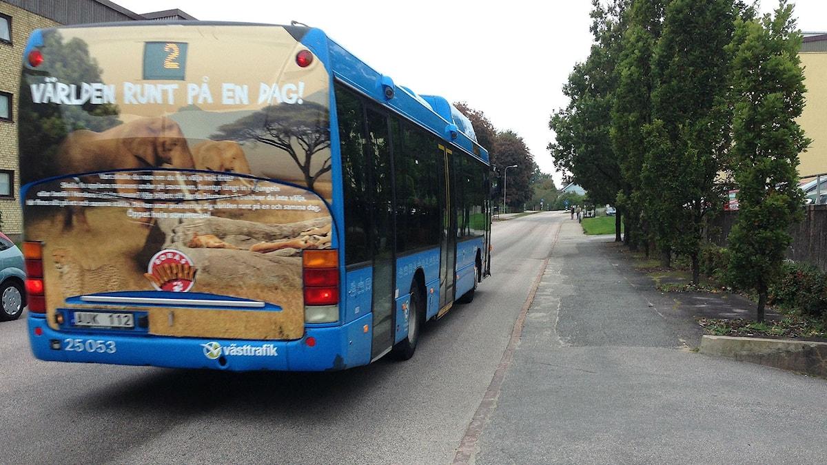 Buss  Foto: Ann-Christin Lundberg