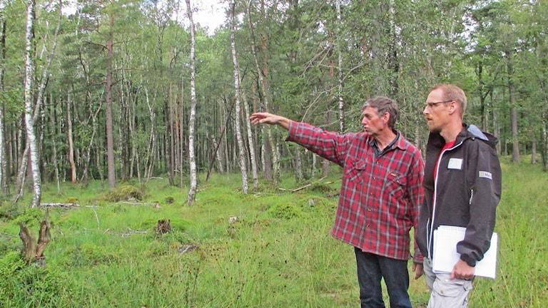 Kommunbiologen Svante Brandin tv och lantbrukaren Ragnar Nilsson. Foto: Pär Sandin, Sveriges Radio.