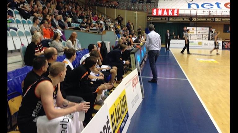 Nöjd bänk i Borås Basket. Foto: Staffan Kulneff