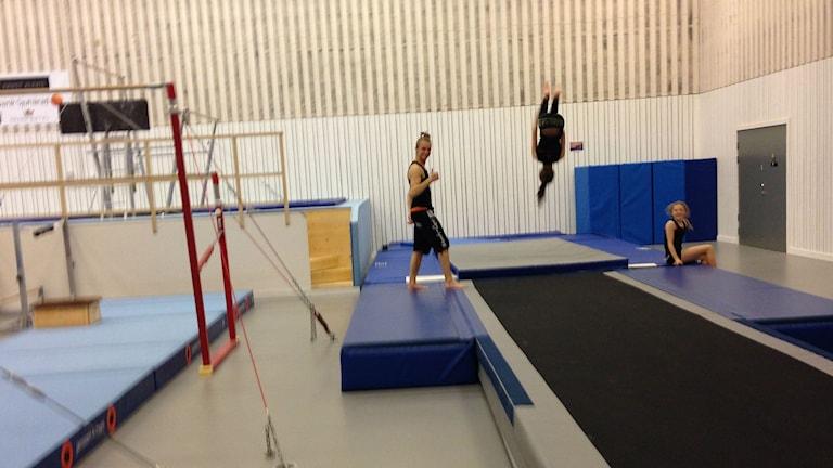 Gymnaster i Gymnastikens hus. Foto: Anton Svensson/Sveriges Radio