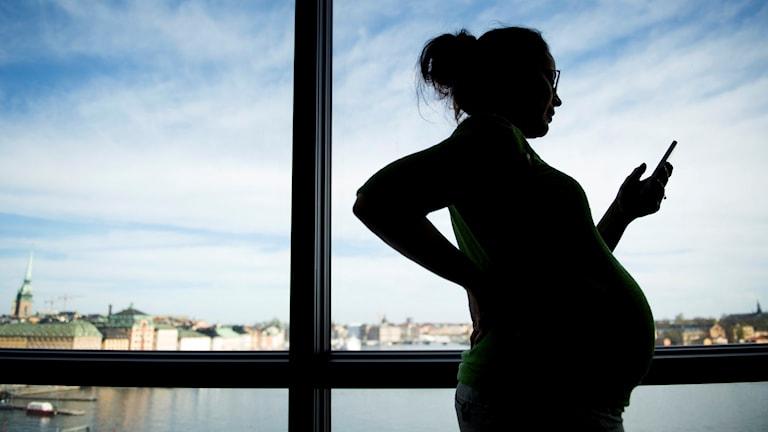Gravid kvinna googlar Foto: Jessica Gow / TT