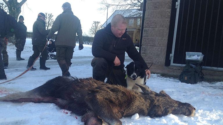 Per Gustafsson med sin hund Canto var det som lyckades skjuta älgkalven idag. Foto: Maja Jerosimic.