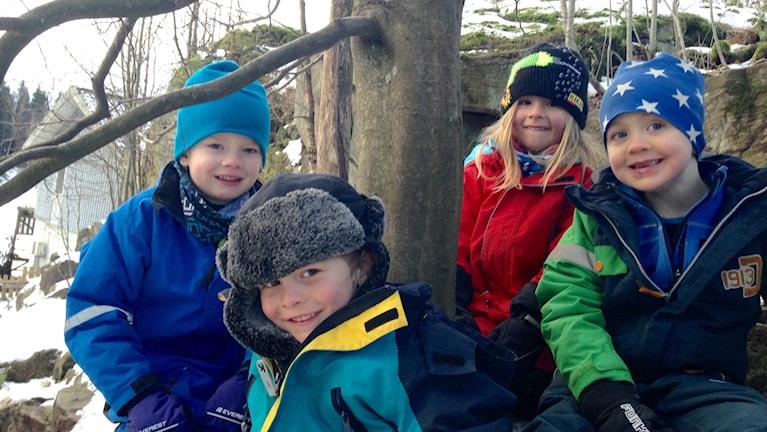 Femåringarna Mattis Gemzell, Olle Olavi, Selma Gustafsson och Alexander Ask Foto: Olivia Ochoa/SR