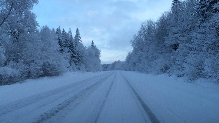 En av många snöiga vägar i Sjuhärad. Foto: Melissa Gustafsson