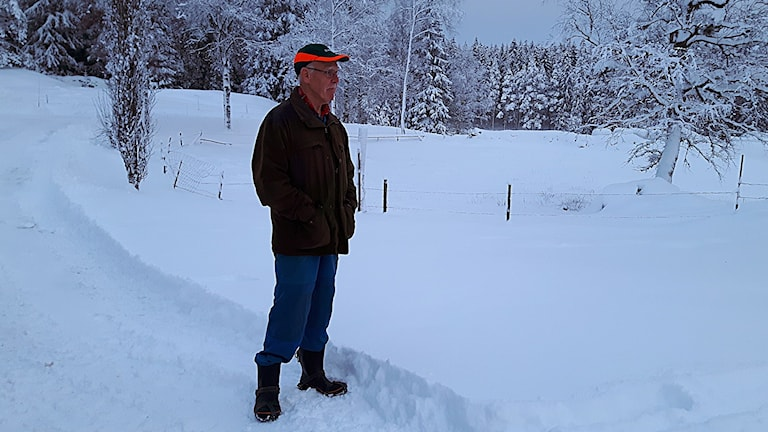 Bertil Andersson Foto: Joel Wendle/SR