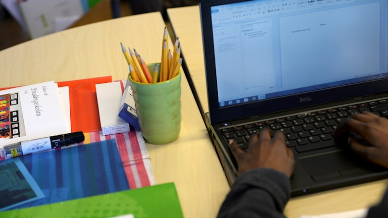 Elev vid dator Foto: Fredrik Sandberg/TT
