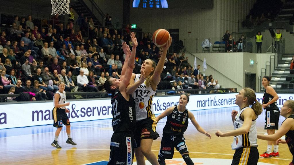 Elin Ljunggren, Mark Basket.