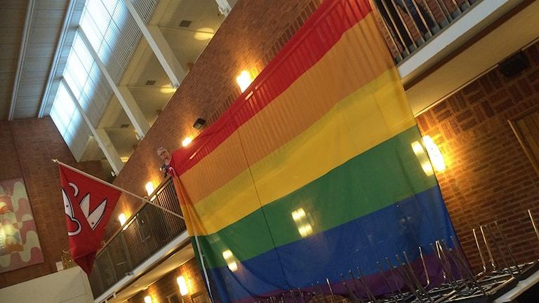 Borås stads regnbågsflagga.