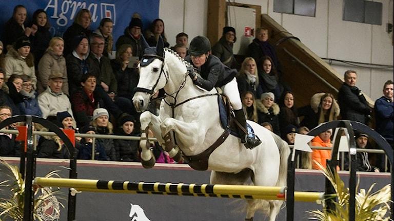 Helena Persson tävlar i hästhoppning