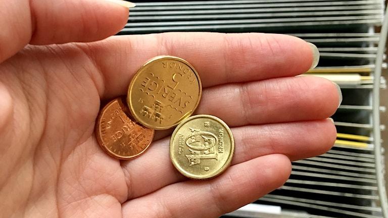Hand som håller i några mynt