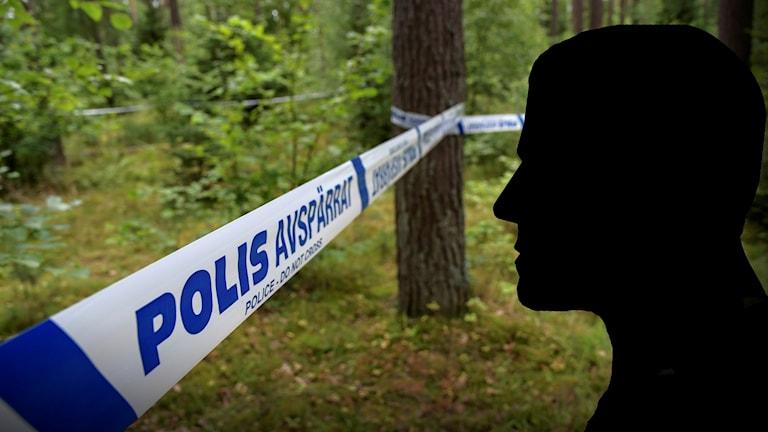 Ett avspärrat skogsparti och en siluett av en man.