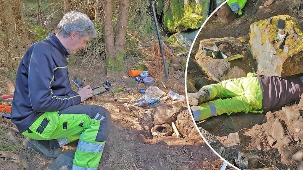 arkeologisk utgrävning i skogen