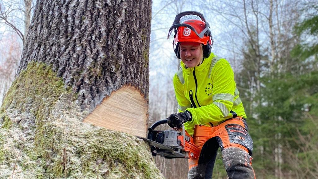 Kvinna fäller träd