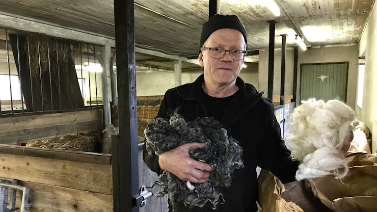 Magnus Jacobsson fårbonde