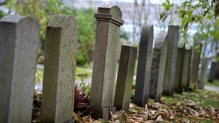 gamla gravstenar