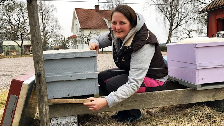 Ida Alfredsson  Framför sina bikupor