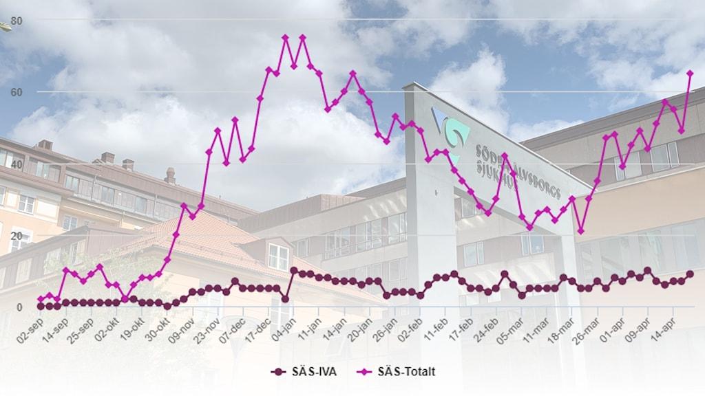 Kurva över antalet patienter som vårdats för covid-19 på SÄS mellan 2 september 2020 och 19 april 2021.