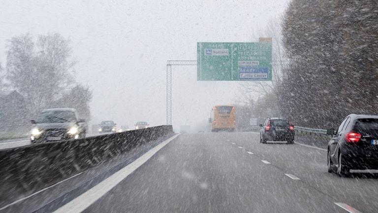 Snön yr över  bilar på riksväg.