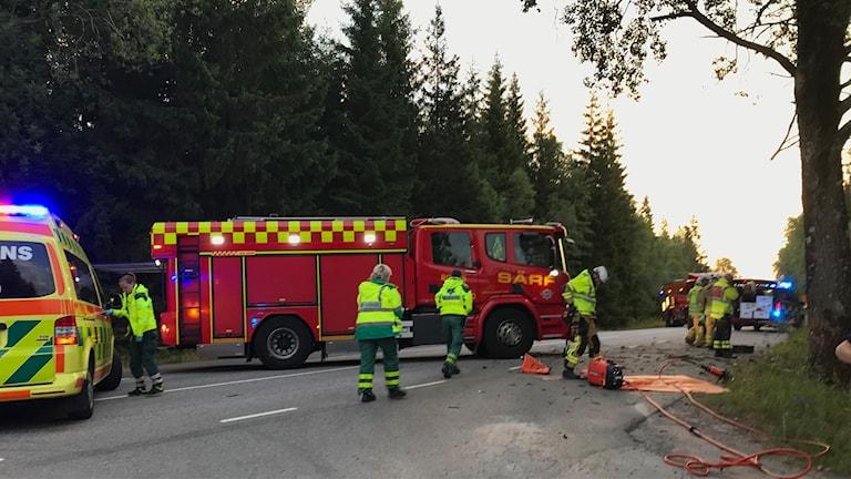 Räddningstjänst och ambulans är på platsen där en bil kört in i ett träd.