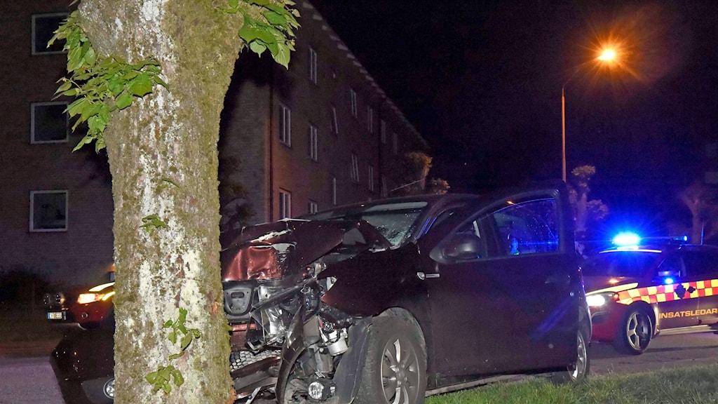 Bilens front är intryckt och står mot ett träd.