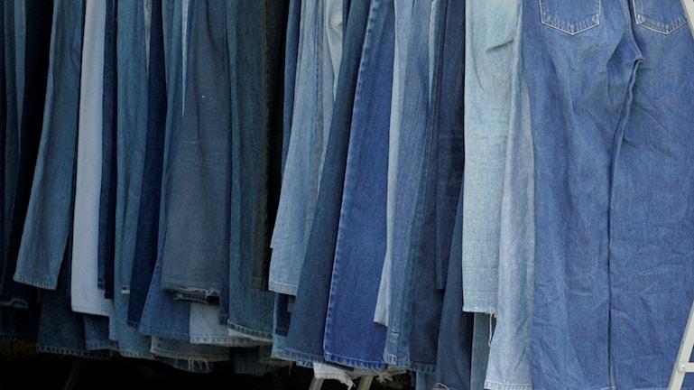 Flera par jeans hänger på en ställning.
