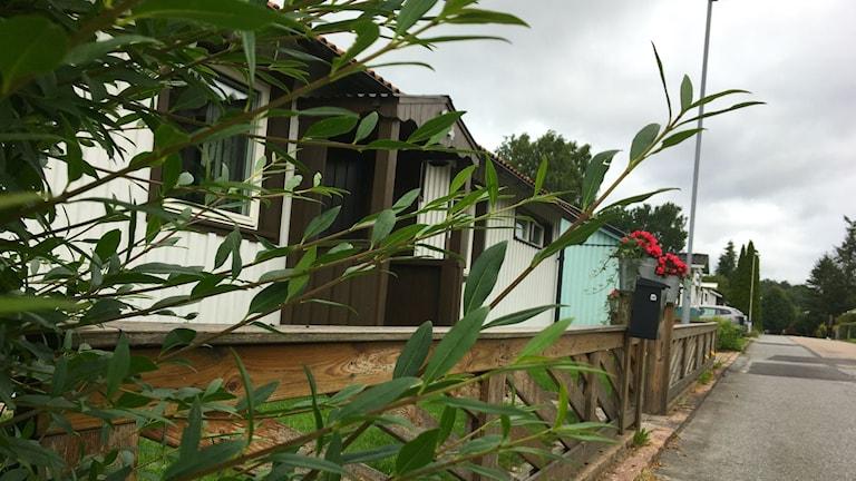 Bild från området på flera hus och buskage.