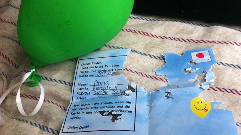 Ballongen som flög hela vägen från tyska staden Beckedorf till Ulricehamn.